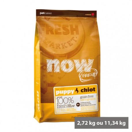 Croquettes sans céréales Now chiot