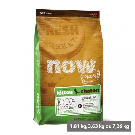 Croquettes sans céréales Chaton Now