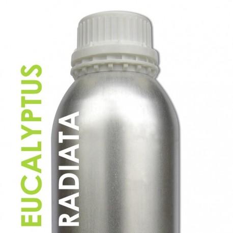Eucalyptus Radiata Huile essentielle 1 Litre Ecocertifiable