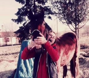 Senaca 2 cheval concours photo décembre 2015