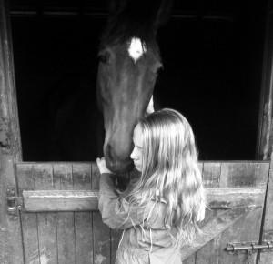 piu cheval concours photo janvier 2016