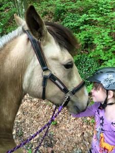 Eliot et gaia cheval concours photo fevrier 2016