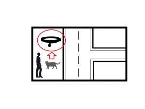deuxième-geste-abandon-animal-réflexe-schéma