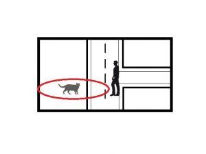 premier-geste-abandon-réflexe-animal