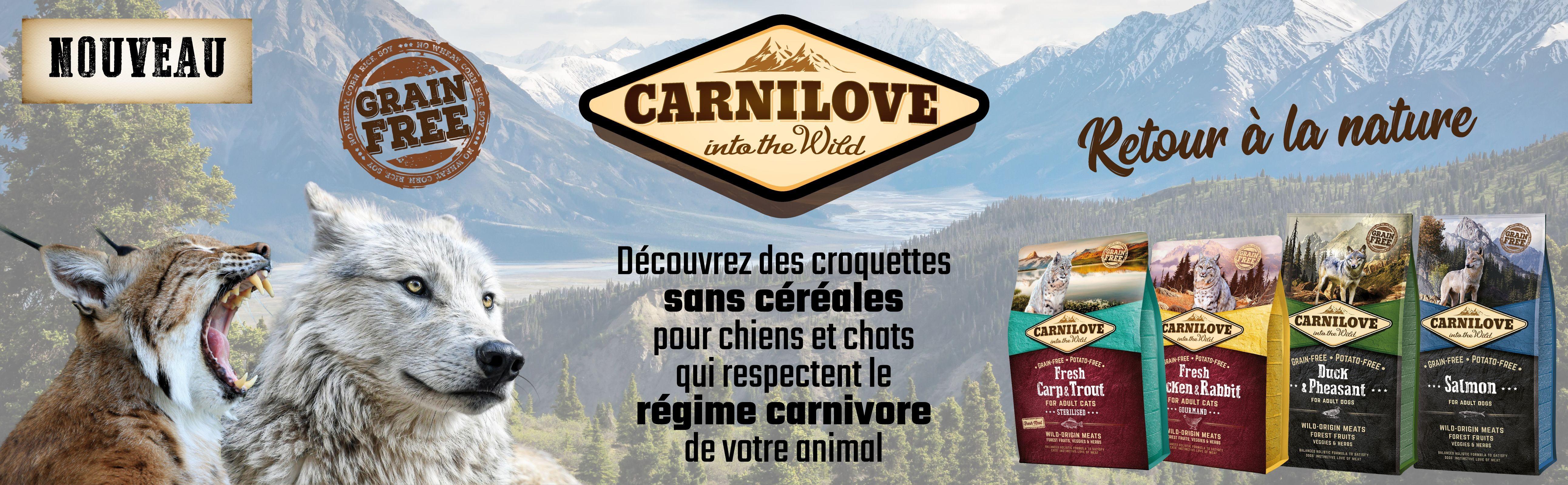 Découvrez des croquettes sans céréales pour chiens et chats qui respectent le régime carnivore de votre animal